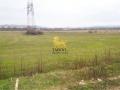 Anunturi imobiliare Terenuri agricole
